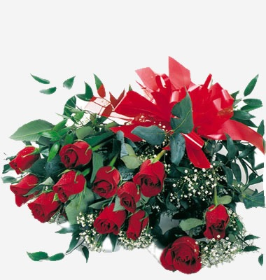 rose_rosse2_maxi
